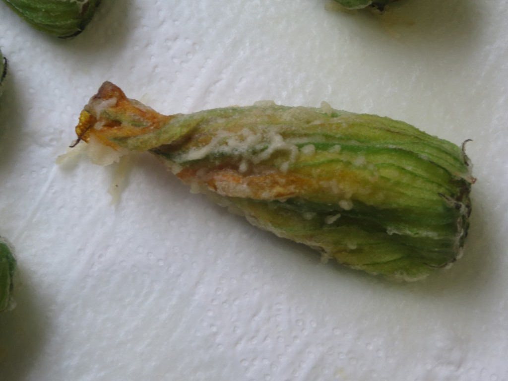 flores de calabacín en tempura sobre papel absorbente