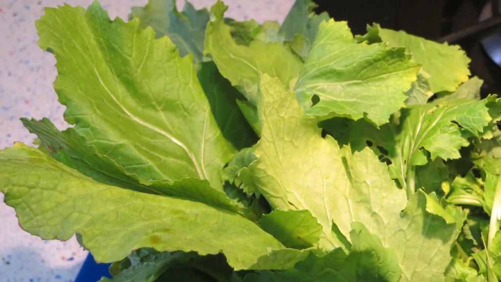 hojas de grelos