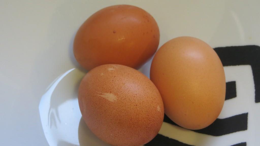 huevos frescos enteros