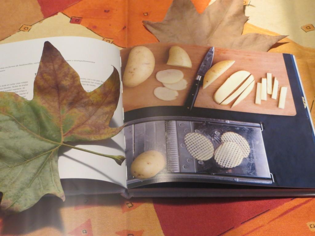 una de las ilustraciones del libro chips caseras